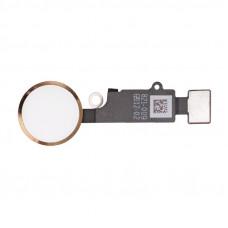 Кнопка HOME iPhone 7/7 Plus/8/8 Plus золотая
