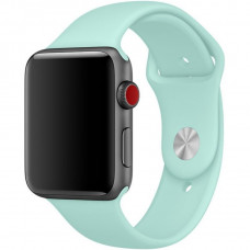 Ремешок Apple Watch 38мм/40мм зеленая лагуна силикон